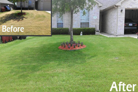 lawn maintenance service addison tx